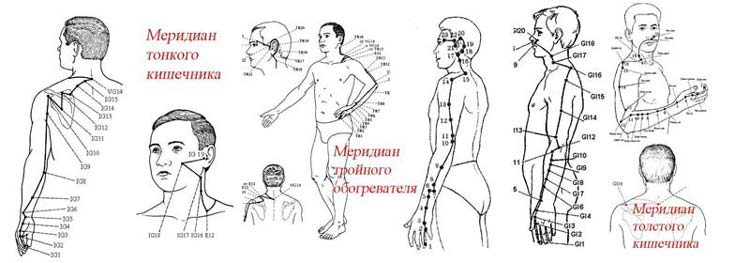 Меридианы янского типа
