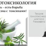 Гомотоксикология