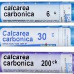 Калькарея карбоника